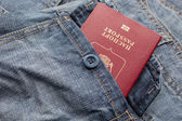 Passport in a pocket — Stock Photo