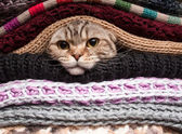 Pile of woolen clothes — Stock Photo