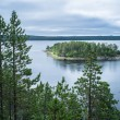View of the island from the cliff through the pines — Stock Photo