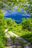 Winding road disappearing into the mountains of Abkhazia — Stock Photo