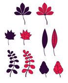 Conjunto de folhas de outono — Vetorial Stock