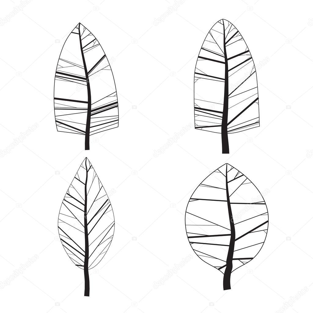 一组简单的观赏树木.白色背景上孤立