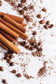 Cinnamon sticks, coffe beans and particles of chocolate — Stock Photo