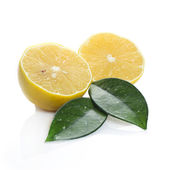Fresh lemon on white background — Stok fotoğraf