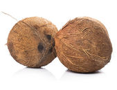 Kokosnoten op witte achtergrond — Stockfoto