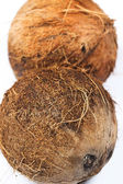 Coconuts on white background — Stock Photo