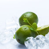 Fresh lime fruit and mint — Stockfoto