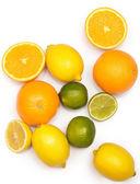 Different citrus fruits — Stock Photo