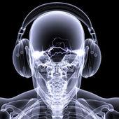 скелет рентген-dj 3 — Стоковое фото