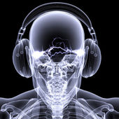 Skelett röntgen-dj 3 — Stockfoto