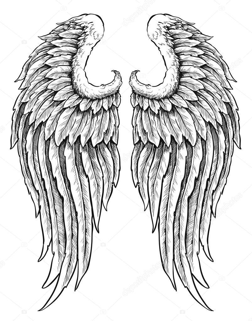 Hand drawn angel wings  Eagle Wings Drawing