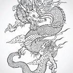 Dragon Tattoo Illustration — Stock Vector