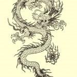 Dragon Tattoo Illustration — Stock Vector #31278595