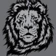 Lion Head Vector — Stock Vector