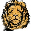 ストックベクタ: Lion Head Stencil Vector