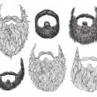 Stock Vector: Hand Drawn Beard Set