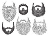 Hand Drawn Beard Set — Stock Vector