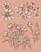 Detailed Sketchbook Hand Drawn Flower Set — Stock vektor