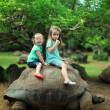 Royalty-Free Stock Photo: Two little sisters ride on a big turtle and have fun