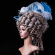 Periwig in baroque style — Stockfoto