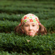 Girl playing hide and seek - Stock Photo