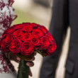 Red roses — Stock Photo #25679259