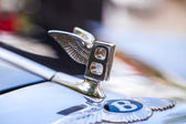 Hood ornament — Stock Photo