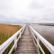 White jetty — Stock Photo