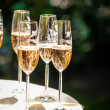 Champagne reception — Stock Photo