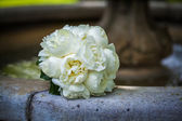 White bridal bouquet — Stock Photo