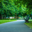 Park bench in Berlin — Stock Photo