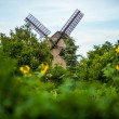 Big brown windmill in Berlin — Stock Photo
