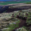 Hiking path in Iceland — Stock Photo