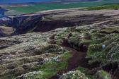 İzlanda'daki yürüyüş yolu — Stok fotoğraf