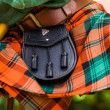 Scottish kilt — Stock Photo #30689161