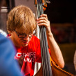 Stock Photo: Double bass player