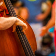 Stock Photo: Musiciplays double bass