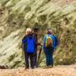Four people stand and talk in Iceland — ストック写真
