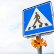 Stock Photo: Decorated traffic sign on Iceland