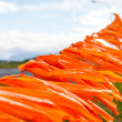 Orange ribbons on a line — Stock Photo