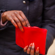 Wallet — Stock Photo #33058275