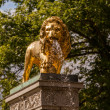 Golden lion — Stock Photo