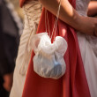 Bride carrying bag — Stock Photo