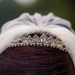 Tiara — Stock Photo