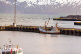 Fishing boat and trawler in Husavik harbor in Iceland — Stock Photo