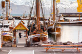 Whale-watching schooners in Husavik harbor on Iceland — Stock Photo