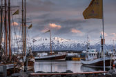 Boats anchored at Husavik harbor on Iceland — Stock Photo