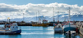 Boats anchored at Husavik harbor on Iceland — Stock Photo