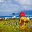 Stock Photo: Colourful rural red and yellow fire hydrant
