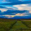 Stock Photo: Icelandic meadows and dramatic sunset
